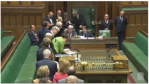 Dr Philippa Whitford MP in the House of Commons, following her swearing in, and now signing the register.